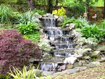 Desain Taman Rumah Dengan Air Mancur yang Asri