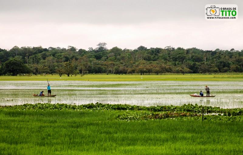 Canoeiros na Área de Proteção Ambiental (APA) do Rio Curiaú, em Macapá, no Amapá