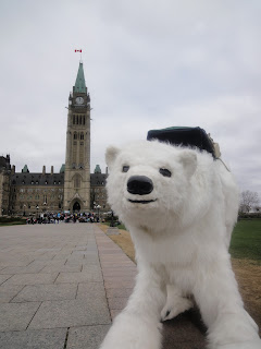 Image of polar bear mascot