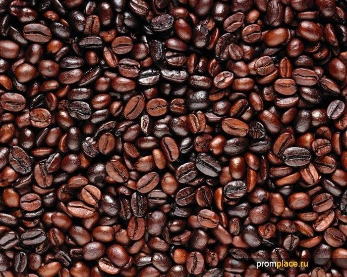 Робуста и аробика: что лучше, полезнее и вкуснее?