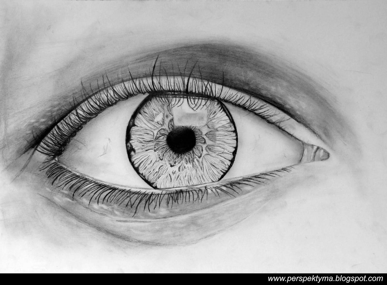 Perspektyma Rysunek Oka