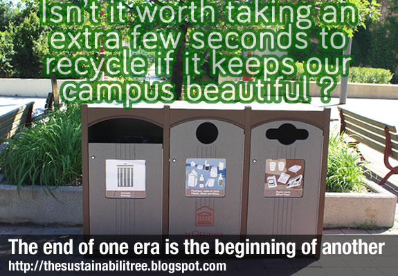 recycling centre, outside, benches, tree
