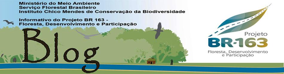 Projeto BR 163 - Floresta, Desenvolvimento e Participação