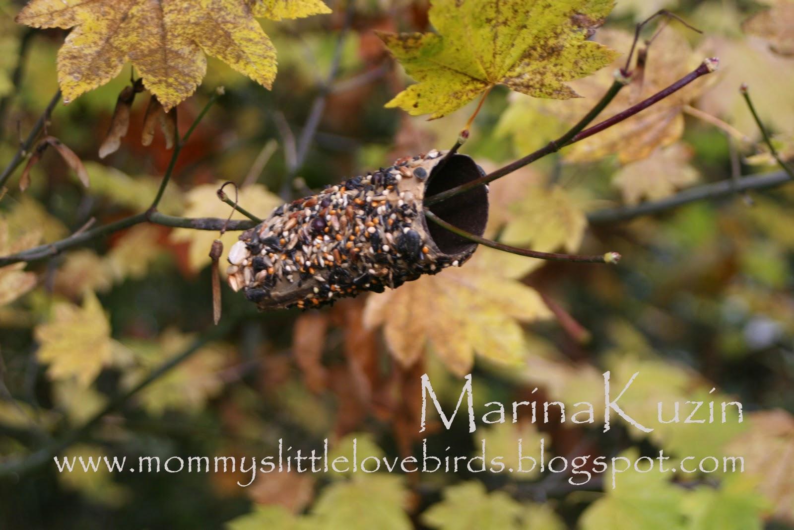 mommys little lovebirds~kids craft~ toilet paper roll bird feeders