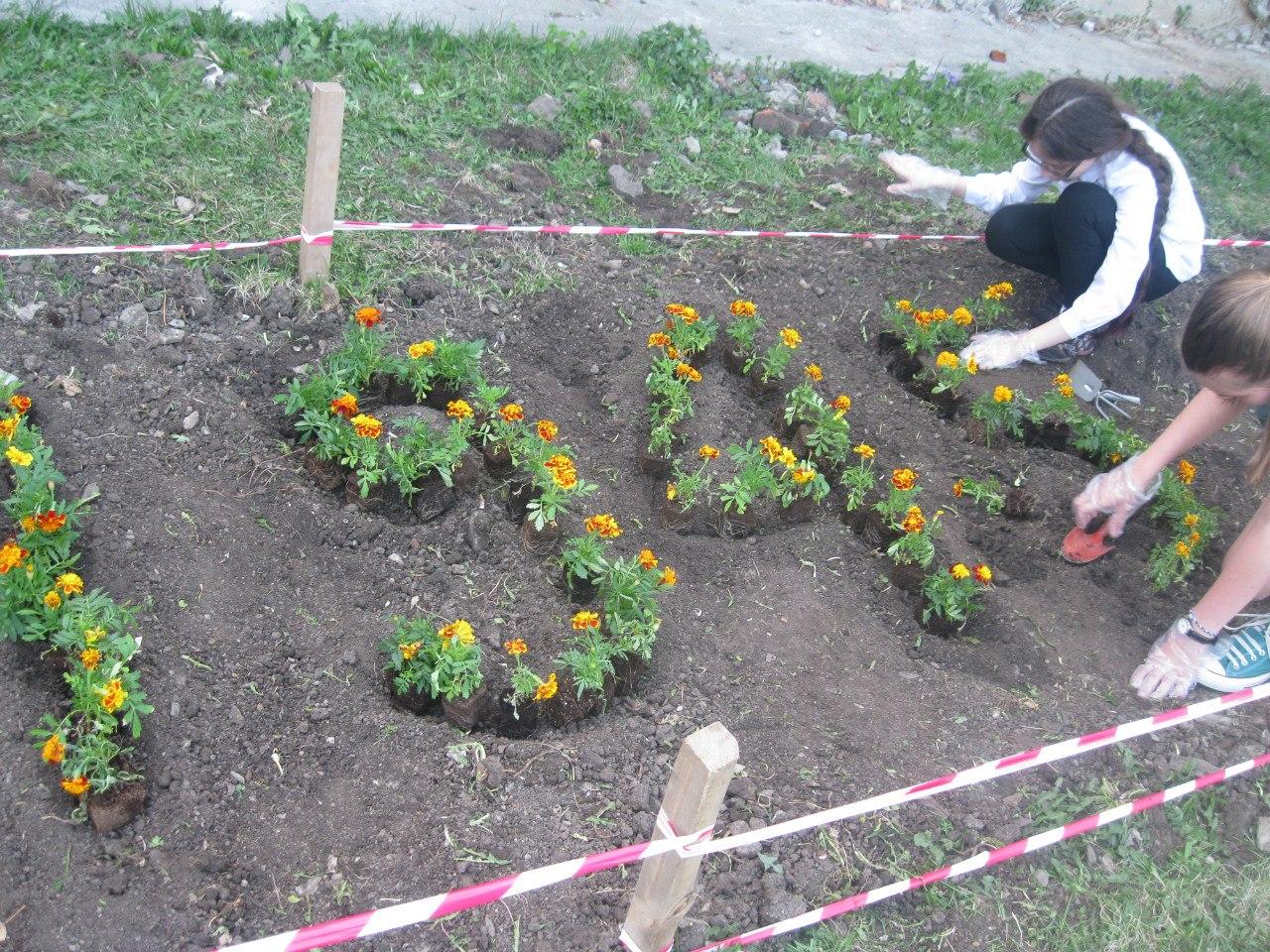 «Цветы жизни»