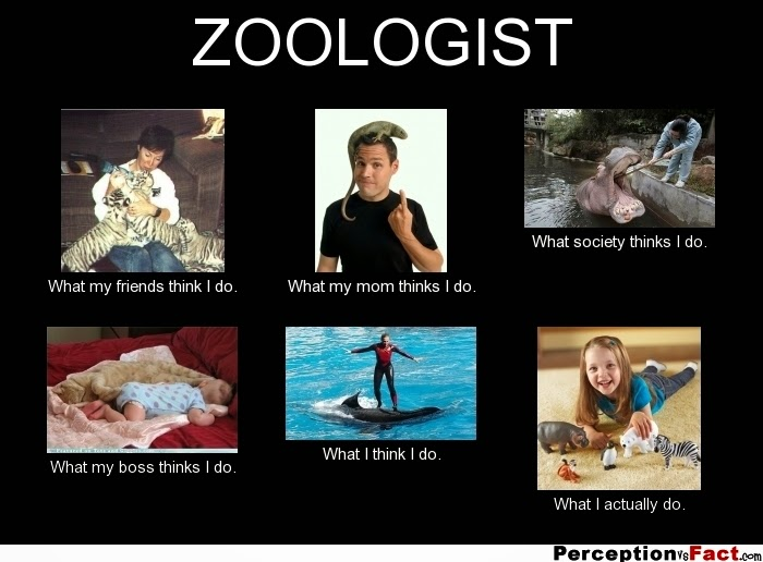 How do I start out an about what a zoologist does?