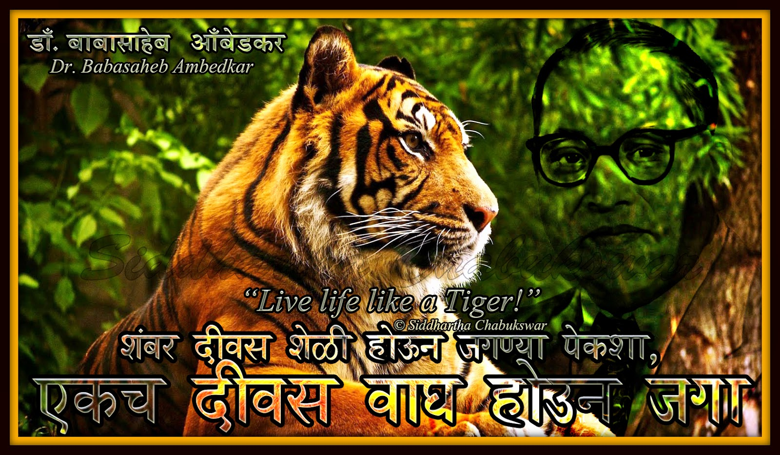 Live+life+like+a+tiger+Dr+Babasaheb+Ambedkar+Wallpaper+HD+Waagha ...