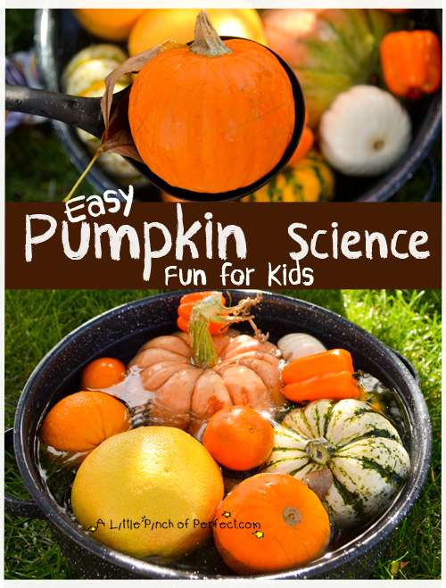 pumpkin science activity