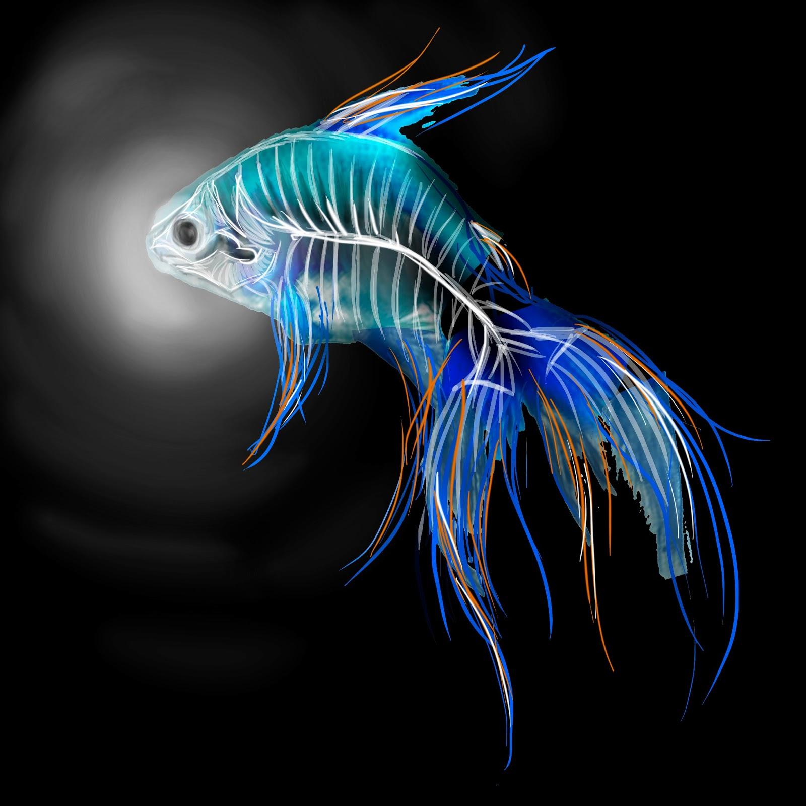 Cuadros con peces cuadros con peces en movimiento for Cuadros de peces