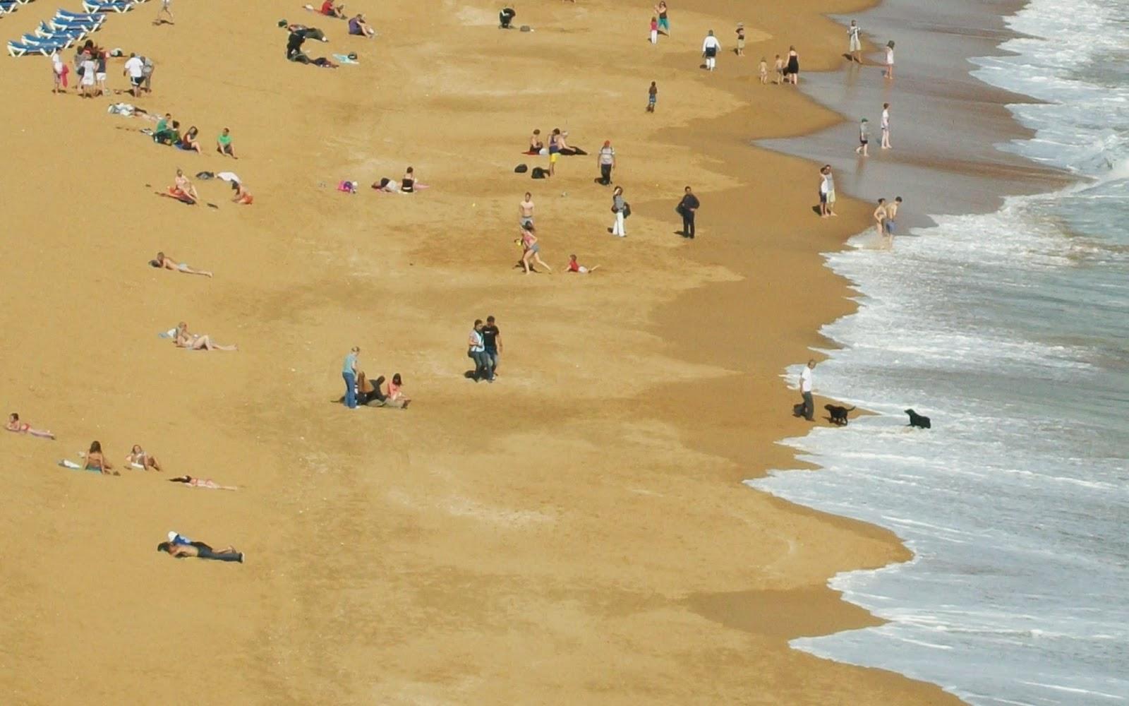 gajas nuas na praia conversa online