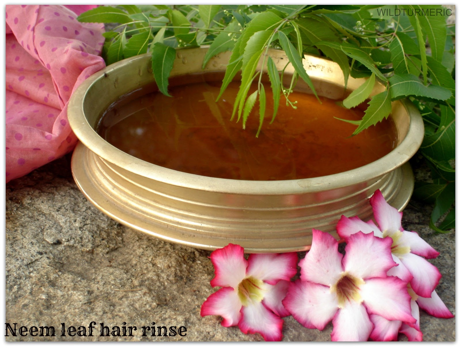 Benefits & Uses of Neem Leaves For Hair: Neem Leaf Hair Rinse