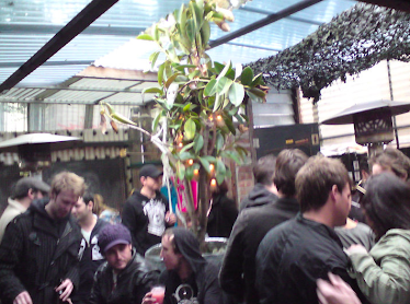 The Back Bar Garden
