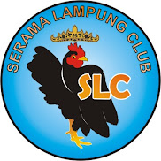 SLC COMMUNITY