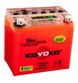 Bateri Motor