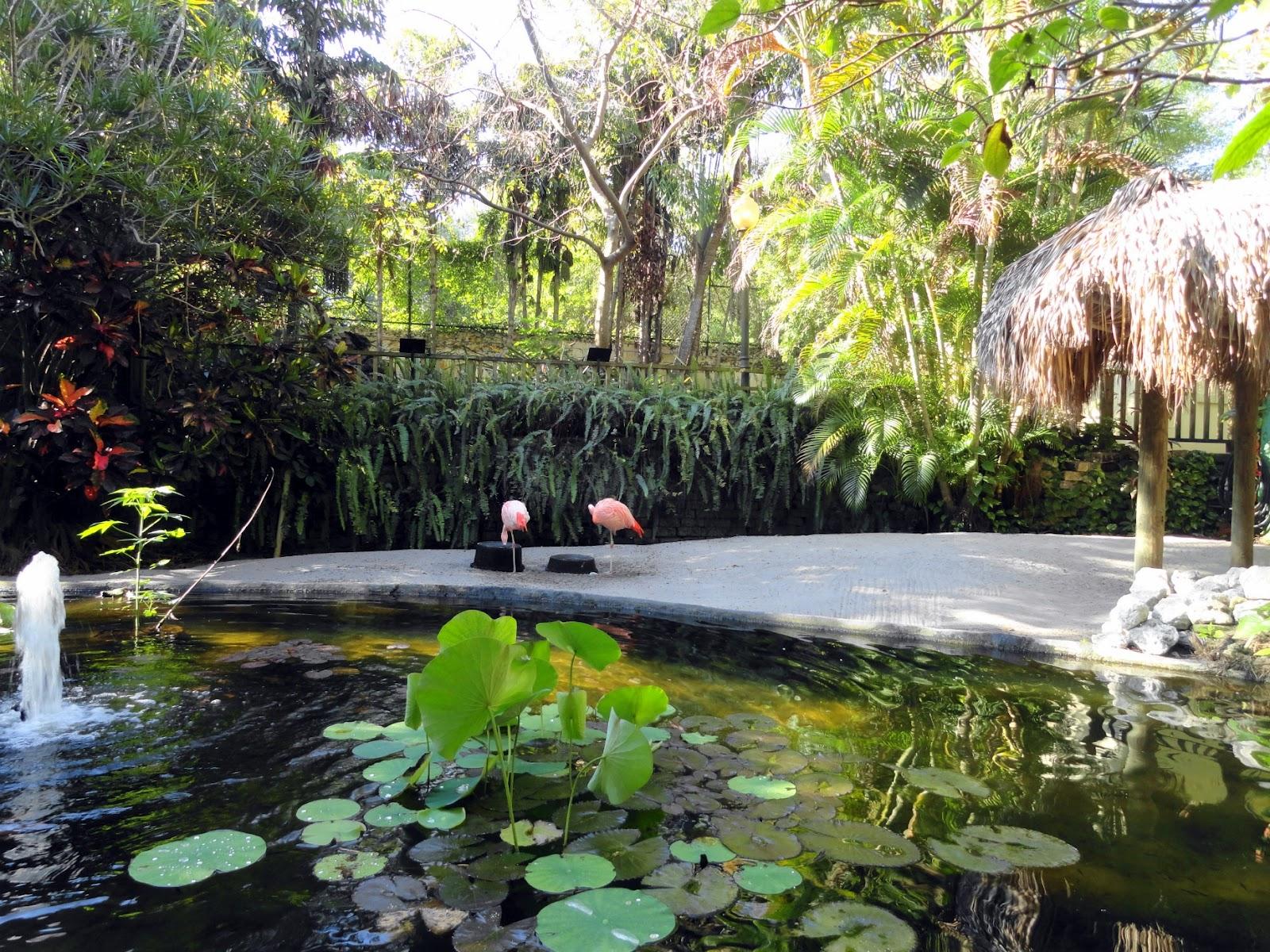 sunken gardens st petersburg florida garden ftempo