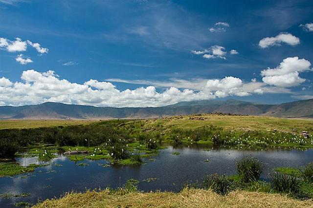 Африка,Танзания,Нгоронгоро,кратер Нгоронгоро,кратер,отдых летом