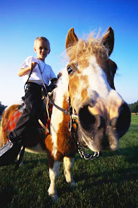 Horse Riding Lessons @ Indian Trail Farms
