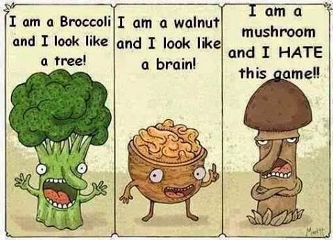 walnut & co