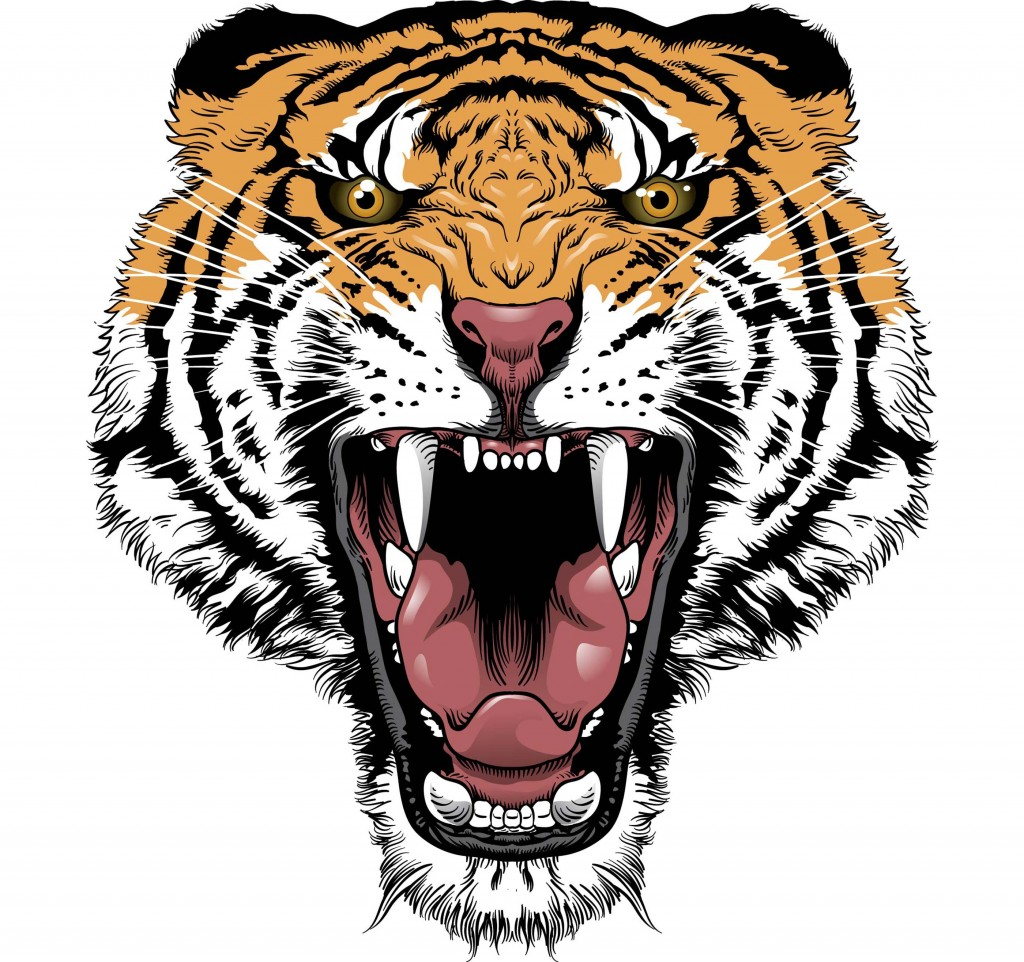 Tattoo Designs Tiger: Dragon Directory: Tiger Tattoo Designs Ideas