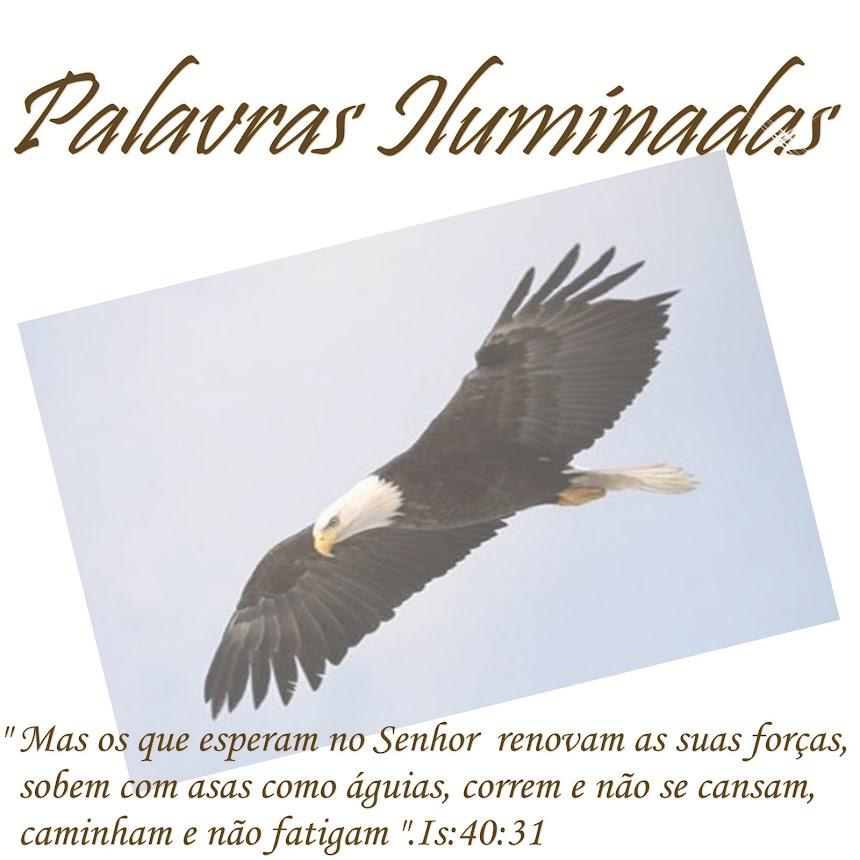 """...""""PALAVRAS ILUMINADAS""""..."""