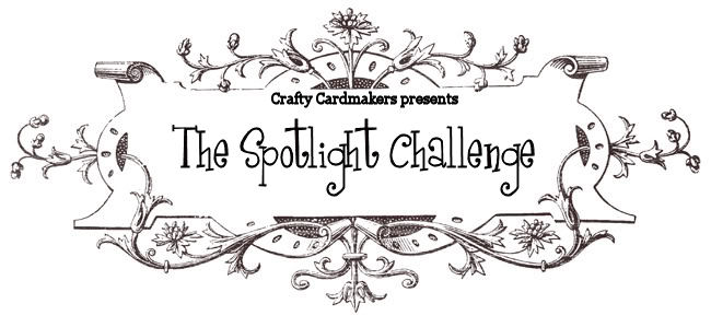 The Spotlight Challenge