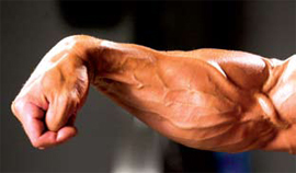 Building Big Forearms Best Exercises