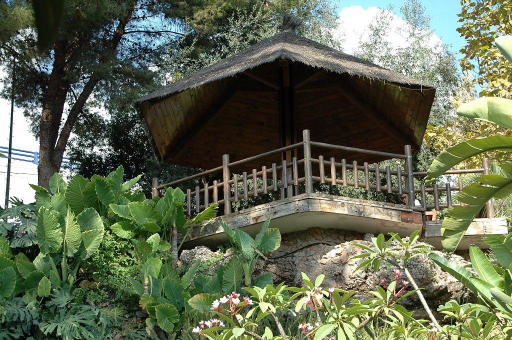 FLORACIONES EN MÁLAGA Y MÁS: Jardín Botánico Molino de Inca Torremolinos 1