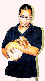 Rex Rabbit