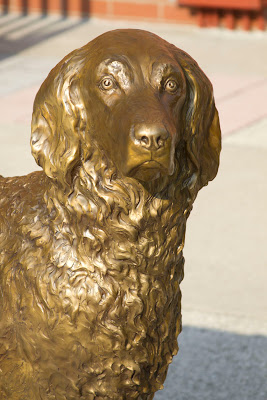 custom dog bronze portrait statue by dog sculptor Lena Toritch
