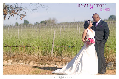 DK Photography Amb1 Meagan & Ambrose's Wedding in Stellenbosch Part I  Cape Town Wedding photographer