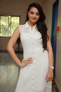 Actress Nikitha Narayan Picture Gallery in White Dress at Ladies and Gentleman Movie Press Meet 6.JPG