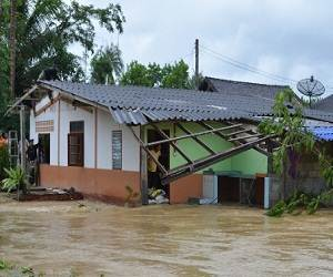 New_Year_Flooding_in_Thailand_natural_disaster