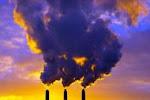 La catastrophe écologique qui s'annonce pose la question de la survie du genre humain