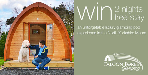 Falcon Glamping Scarborough Competition