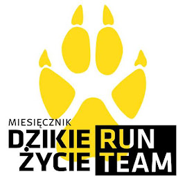DZIKIE RUN ŻYCIE TEAM