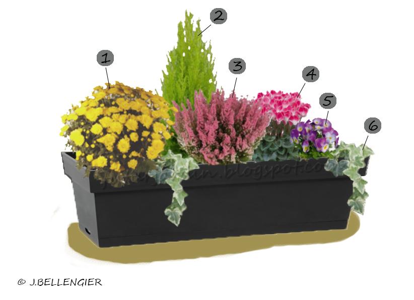 futur jardin composer une jardini re d 39 automne. Black Bedroom Furniture Sets. Home Design Ideas