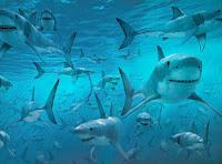 Se os tubarões fossem homens - Bertold Brecht
