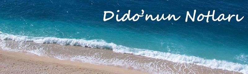 Dido'nun Notları