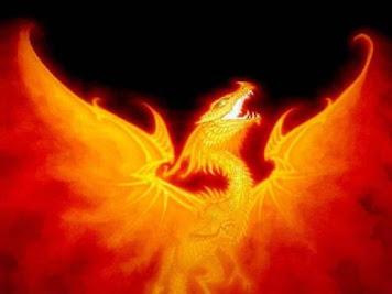 """Canal """"Fuego de Dragón"""""""