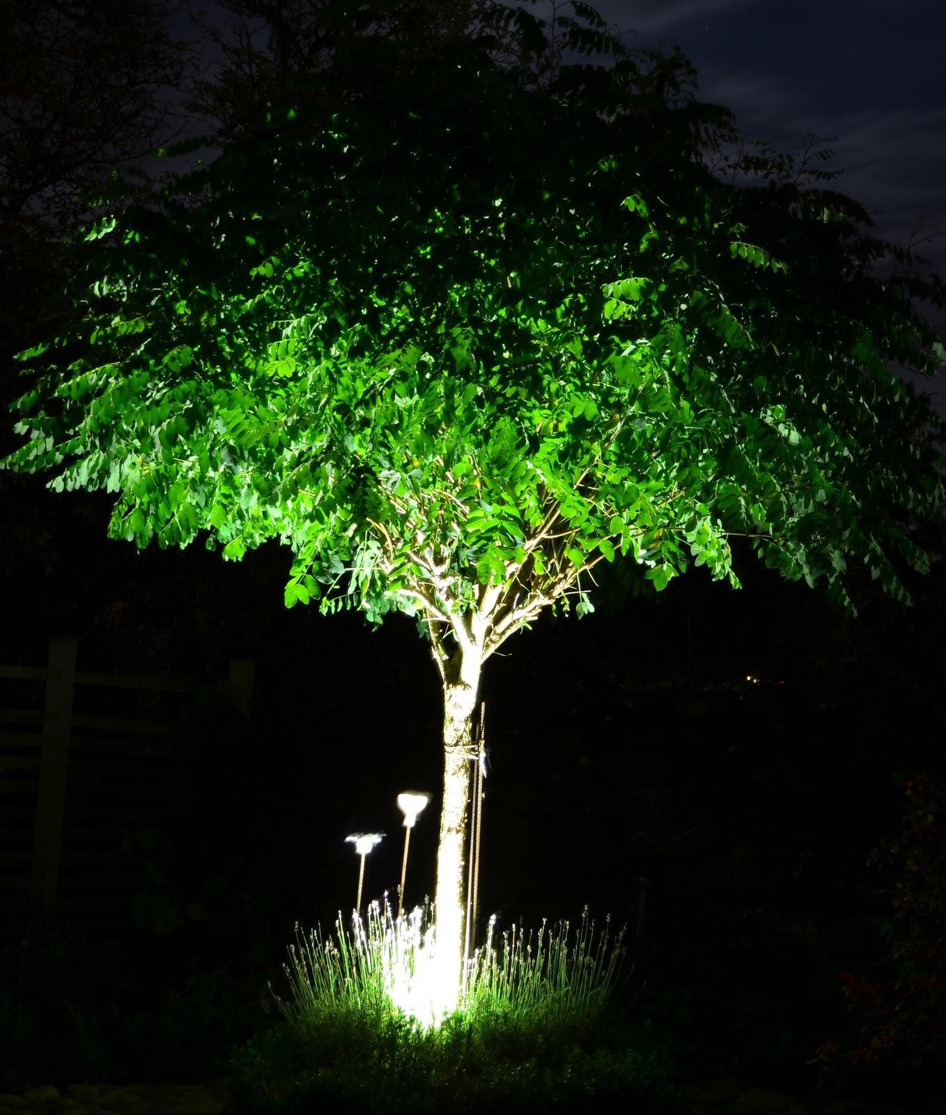 Kungsbacka Trädgårdsdesign: Belysning i din trädgård