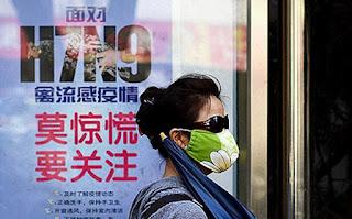 Yang Perlu Anda Tahu Seputar Virus Flu Burung H7N9