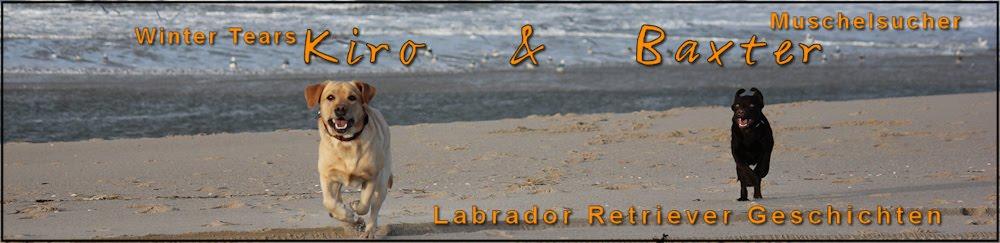 Kiro & Baxter - Labrador Geschichten