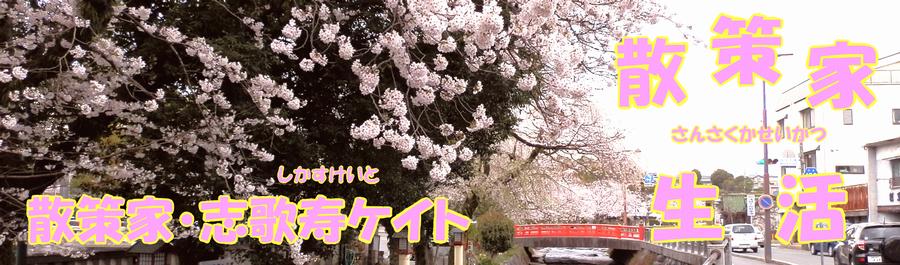 志歌寿ケイトの散策家生活