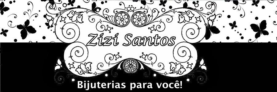 Blog da Zizi