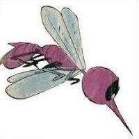 Resultat d'imatges de els mosquits