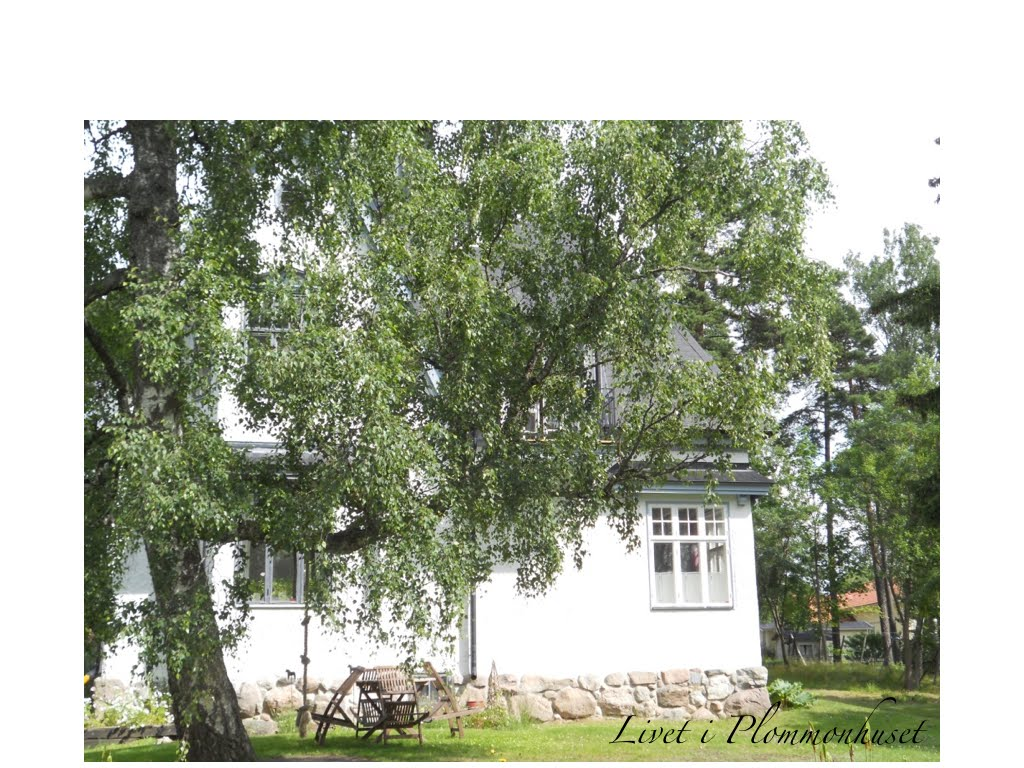 Plommonhuset i sommarskrud