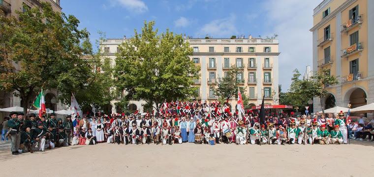 V Festa Reviu els Setges Napoleònics (2013)