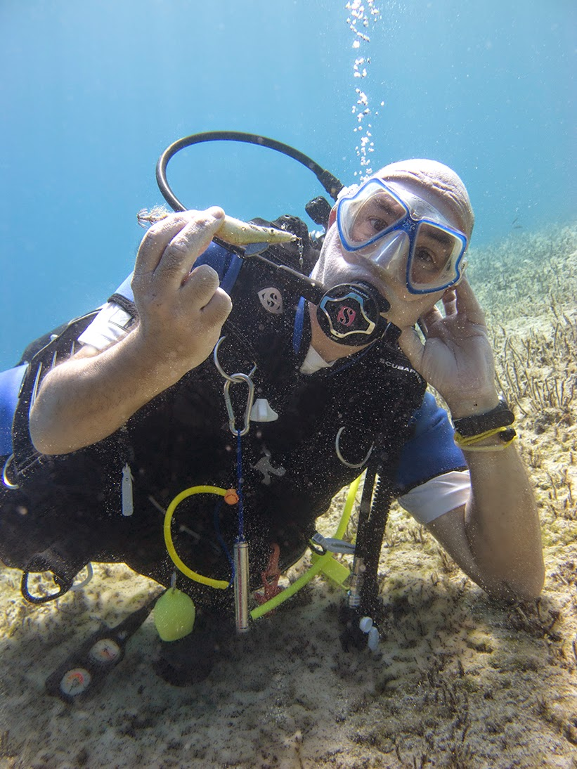 diver relaxes underwater with little fish