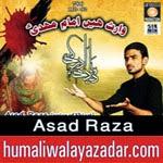 http://www.humaliwalayazadar.com/2014/11/asad-raza-nohay-2015.html