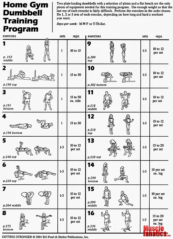 Home Gym Dumbbell Training Program